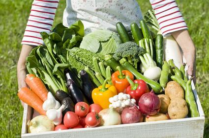 野菜を持つ