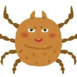 秋のダニはアレルギーの原因?刺されないために掃除で対策!