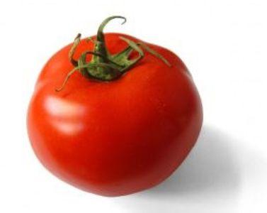 tomato-min